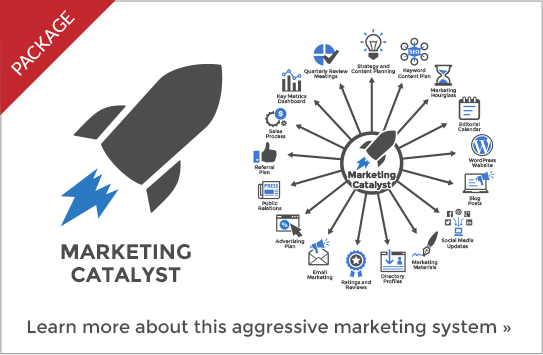Catalyst Marketing System, marketing system, marketing program